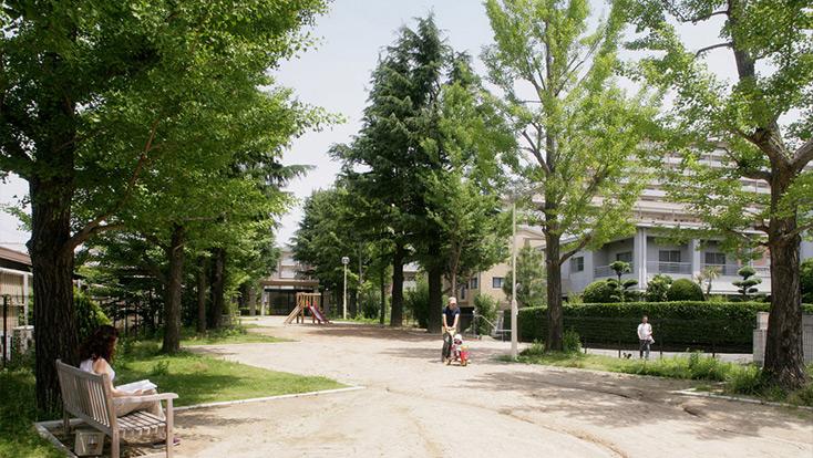思い出の並木公園(旧大学の並木道)