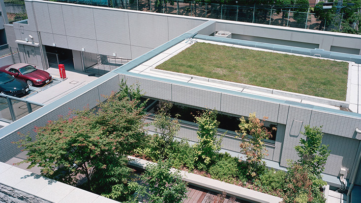 屋上庭園(2010年6月撮影)