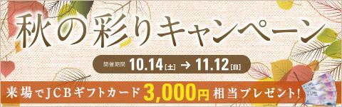 秋の彩りキャンペーンにしてください。